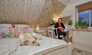 Päevateki pehmus meelitab Savanna voodisse.Mari Riina seda heaks ei kiida.