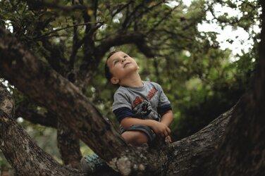 dd6a1eb3d11 Neid asju peaks teadma iga vanem, kelle lapsel algab sel sügisel esimene  kooliaasta!