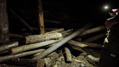 FOTOD | Ootamatu avastus peatas raietööd: Kuramaa metsast leiti 76 aastat puutumatult seisnud Saksa armee punker