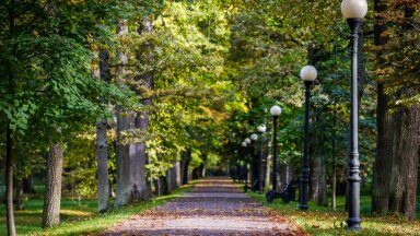 Осень вступает в свои права: чем порадует погода в последние дни сентября?