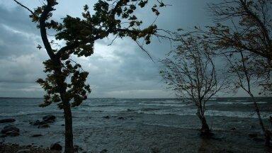 НЕДЕЛЬНЫЙ ПРОГНОЗ | Дождь промочит каждый уголок. После шторма и ночных заморозков погода смягчится