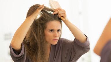 Uskumatu, aga need viis toitu aitavad ennetada halle juukseid