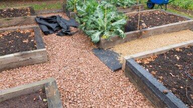 Igal aiakangal on oma eesmärk. Kui neid valesti kasutada, ei saavuta oodatud tulemust. Teeme põhjalikult selgeks, kuidas on õige!