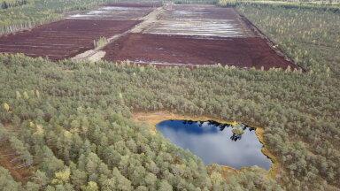 Фрезеровочная площадка торфяника в Эсс-соо, где будет осуществляться посев торфяного мха.