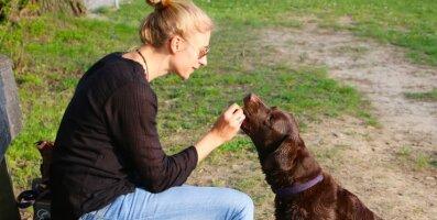 Igaüks pole semu: koertel on oma nipid, kuidas sõpru valida