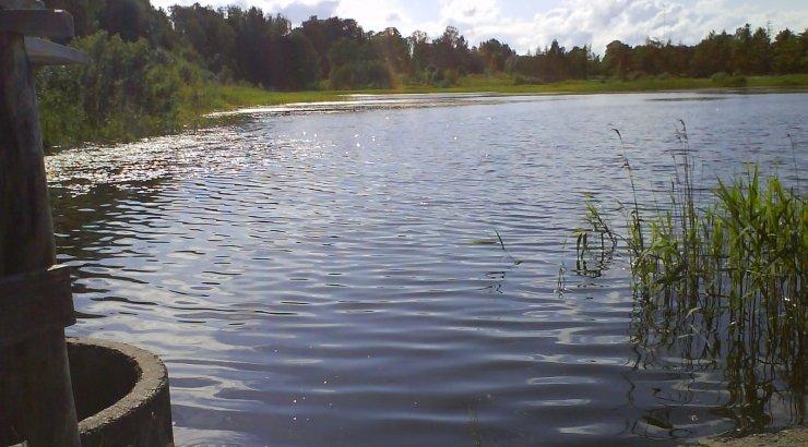 Väikejärvede kalastiku uuringu suurimad üllatajad olid Kuningvere järve viis põlvkonda kohasid
