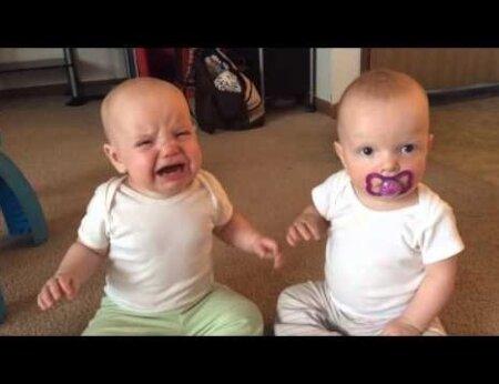 BEEBIVIDEO: kaksikud ei suuda kuidagi ühte lutti jagada