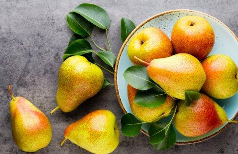 Kvaliteetset pirnisaaki saada on võimalik ka meil. Kuid nii ahvatlevalt punapõsksed ja suured nagu välismaised pirnid, meie aedades kasvavad puuviljad tavaliselt välja ei näe.