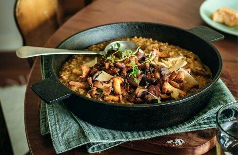 RETSEPTID   Põnevad maitsed! Valmista seene-porgandigaletti, seenerisotot, kukeseenemääret ja puraviku-pirnisalatit