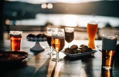 Tervise Arengu Instituut pakub alkoholitarvitamise vähendamisel abi uue internetipõhise programmiga