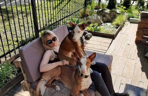 Loomafotograaf Kristiina Tammik: naljakas on see, et koos koeraga välja sööma minnes saab lemmik tasuta vett juua, aga mina mitte! Koer on eelisseisus!