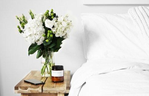 Parema une nimel: kas taimed magamistoas on hea mõte?