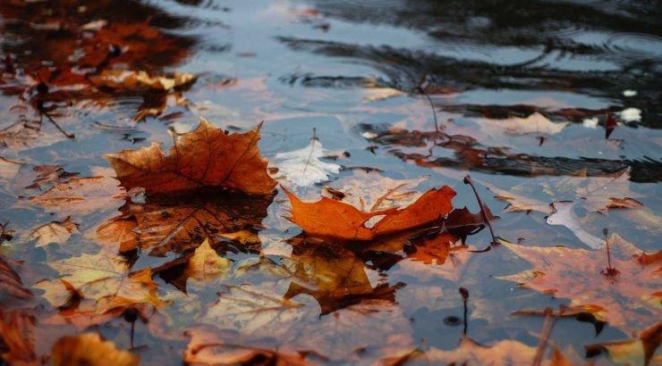 Kuidas mõista ilmateadet? Vihma sajab kohati, paiguti, mitmel pool ja paljudes kohtades