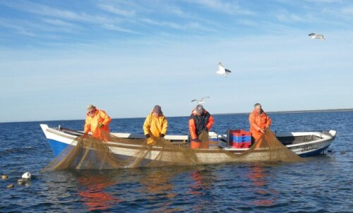 Põnevad tegevused Hiiumaal: mine kas kaluritega merele või restorani šampanjat jooma, argielust välja saad kindlasti