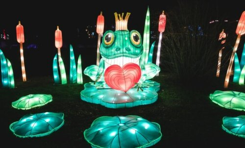 IDEE NÄDALAVAHETUSEKS | Mine kogu perega maagilist maailma uudistama: Tallinna Lauluväljakul avati suur valgusskulptuuride park