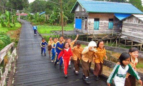 Reisikiri: Suur seiklus läbi Indoneesia vihmametsa