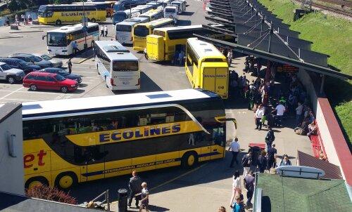 ECOLINES по Прибалтике предлагает два места по цене одного