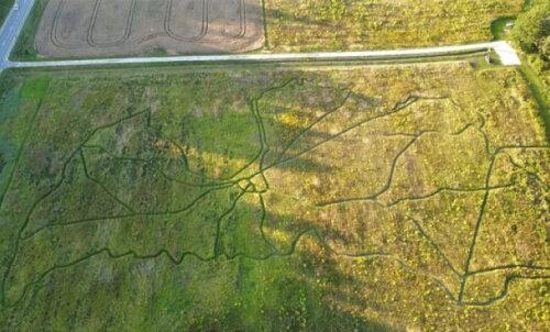 ВИДЕО   В Латвии создали необычную карту, по которой можно ходить