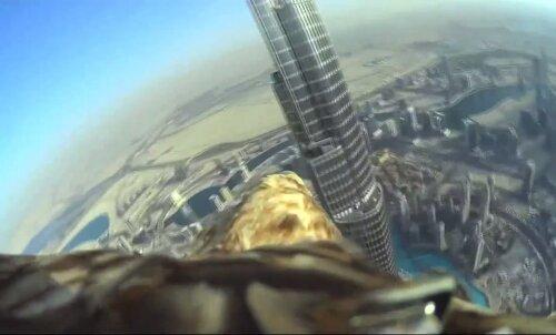 VIDEO: Vaata kotkakaamerast, kuidas näeb välja maailma kõrgeima hoone Burj Khalifa tipust laskumine