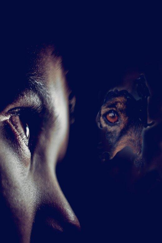 TEST | Pane end proovile ja vaata, kas tunned silma järgi ära, mis loomaga on tegu?