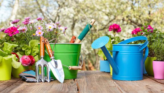 16a9e754e2a Maikuu aiatööd — millal on õige aeg erinevaid taimi külvata ja istutada?