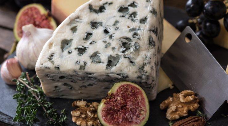 Sa oled arvatavasti terve elu juustu valesti hoiustanud ja sellepärast see nii kiiresti halvaks lähebki