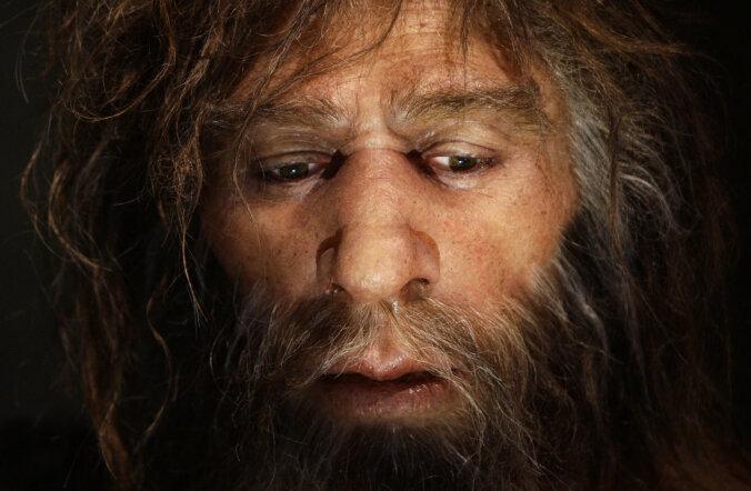 Valutava hambaga neandertali noormees kasutas juba 50 000 aastat tagasi aspiriini ja antibiootikume