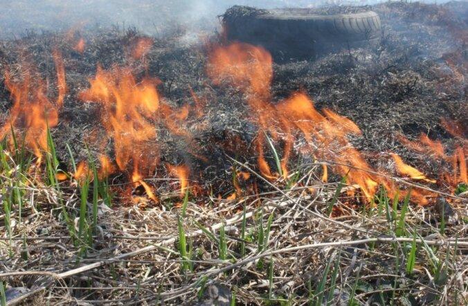 Hooletute lõkketegijate suhtes alustatakse menetlust