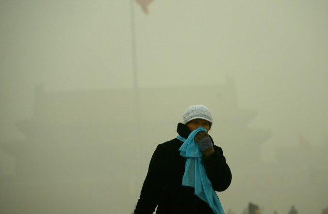 Приземный озон в Эстонии вызывает до 134 преждевременных смертей в год