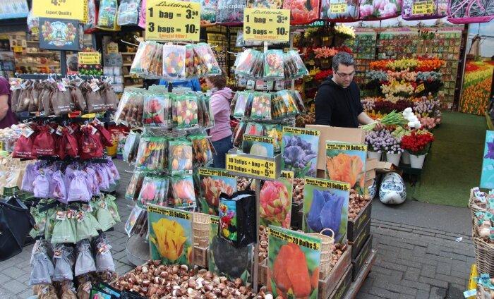 Афера века: цветочный рынок в Амстердаме вот уже 20 лет жестко обманывает покупателей