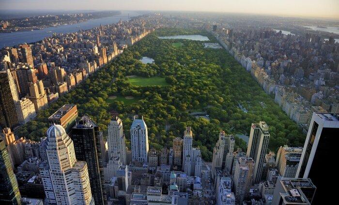 В Нью-Йорке появилась новая достопримечательность — туалет за 300 000 долларов