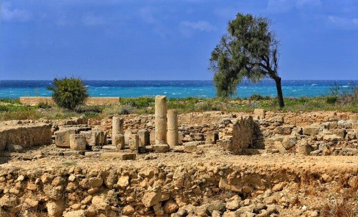Кипр накрыла волна мошенников Airbnb