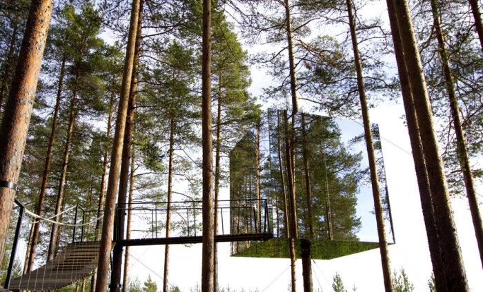 Loodusele lähemale - Põhja-Rootsis saab ööbida luksuslikult puu otsas