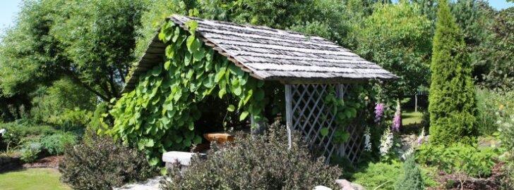 Mahu aed, Endel ja Maila Hõim, Eesti kauneim maako, aia kategooria võitja