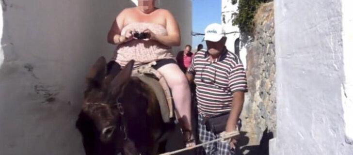 Власти Греции защитили ослов Санторини от туристов с лишним весом