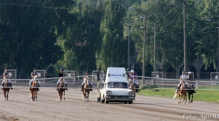 Esmakordselt Eestis: eesti hobuste ratsatraav