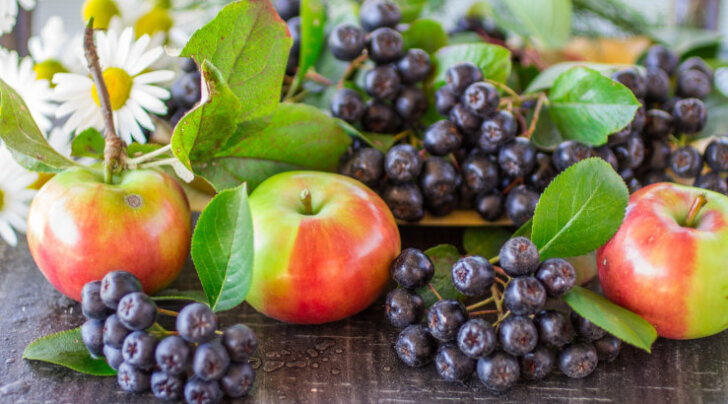 On aeg teha vitamiinirikast ja tervislikku arooniamahla