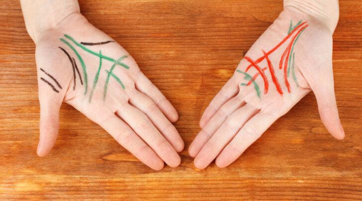 Mida ütlevad suured käejooned: elujoon, südamejoon, mõistusejoon ja saatusejoon