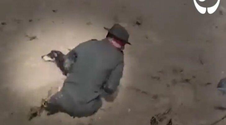 Tõeline eeskuju: politseinik riskib eluga, et päästa kiirevoolulisest jõest uppumissurma äärel olev koer