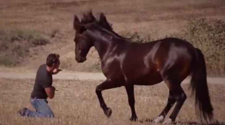 VIDEO: Vaata, millise silmapaistva tantsuvideoga üllatab see ratsanik