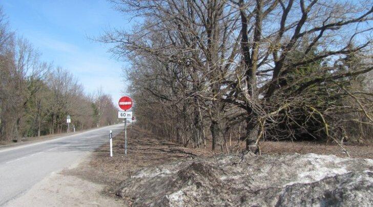 Ääsmäe Külakogu on võtnud nõuks taastada küla ajaloolised puiesteed