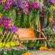 Какие многолетники посадить на даче, чтобы они цвели все лето