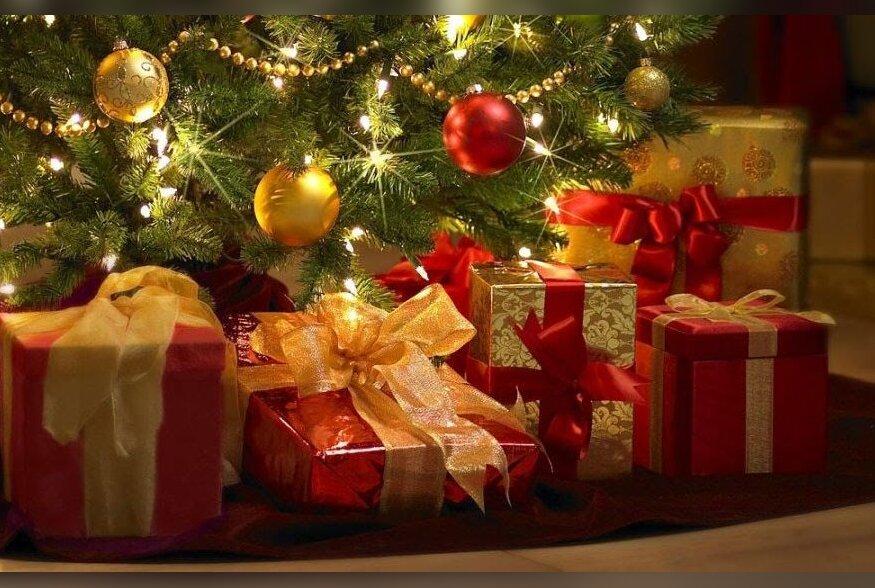 TOIDUREPLIIK   Kuuse all on kints sinki ehk mida kinkida jõuludeks?