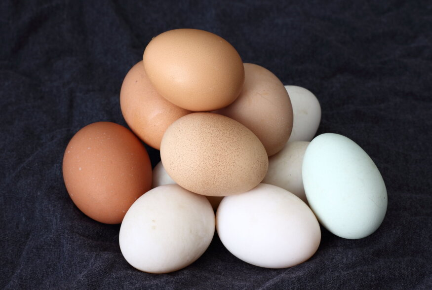 TULETAME MEELDE | Kuidas aru saada, kas muna ikka kõlbab veel söögiks?