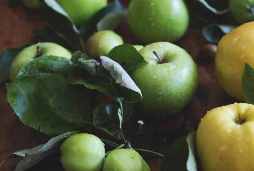 ÕUNASPIKKER   Milline Eesti õun sobib mahlaks, milline moosiks ja kompotiks?