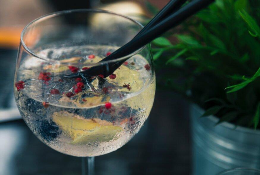 Kumb on pildil: alkoholivaba džinn ja toonik või alkoholiga džinn ja toonik?