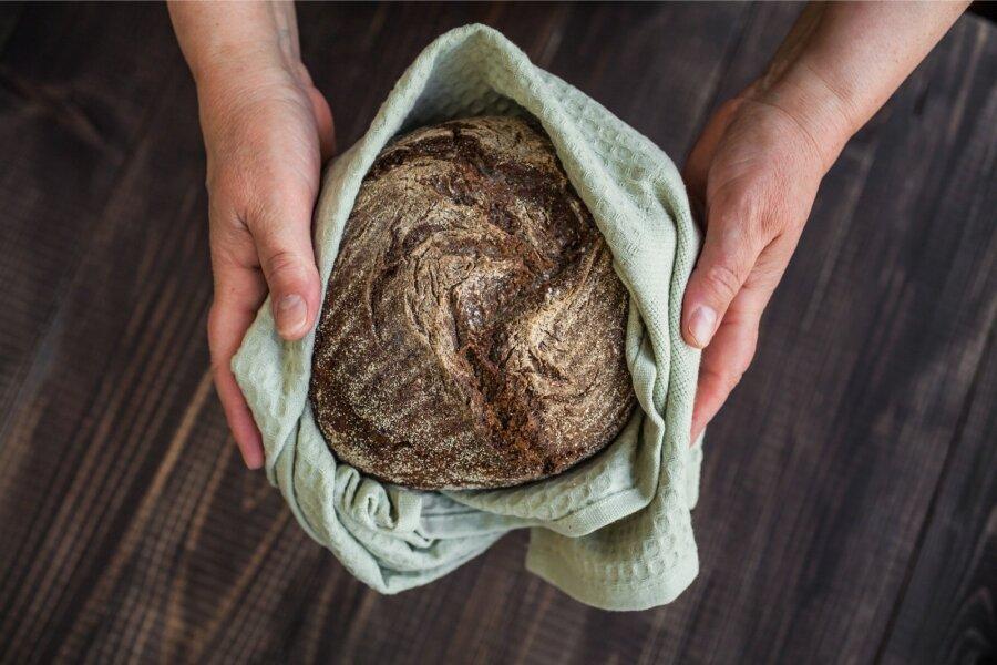 RUKKIMAARJAPÄEV! Kust tuli meile leib ja kuidas seda vanasti tehti?
