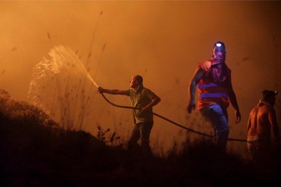 Около 40 человек стали жертвами лесных пожаров вИспании иПортугалии