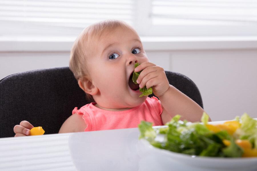 Диета против рака: как питание влияет на здоровье   вести. Медицина.