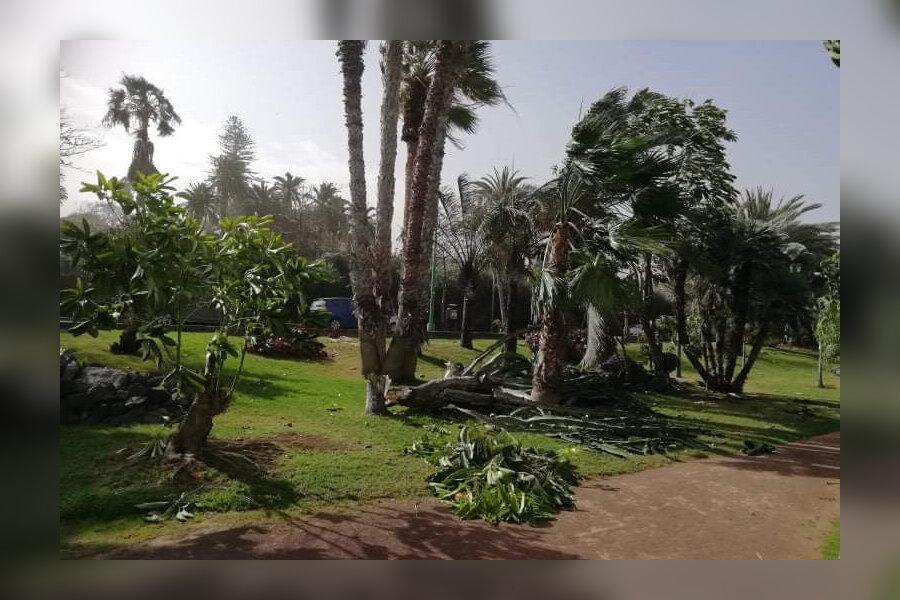 Torm murdis Tenerifel puid.